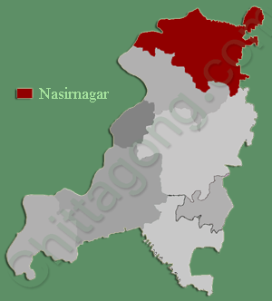 নাসিরনগর উপজেলা