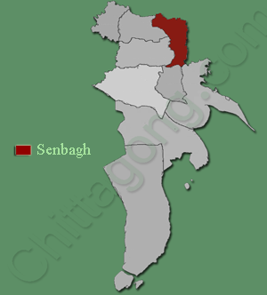 সেনবাগ উপজেলা